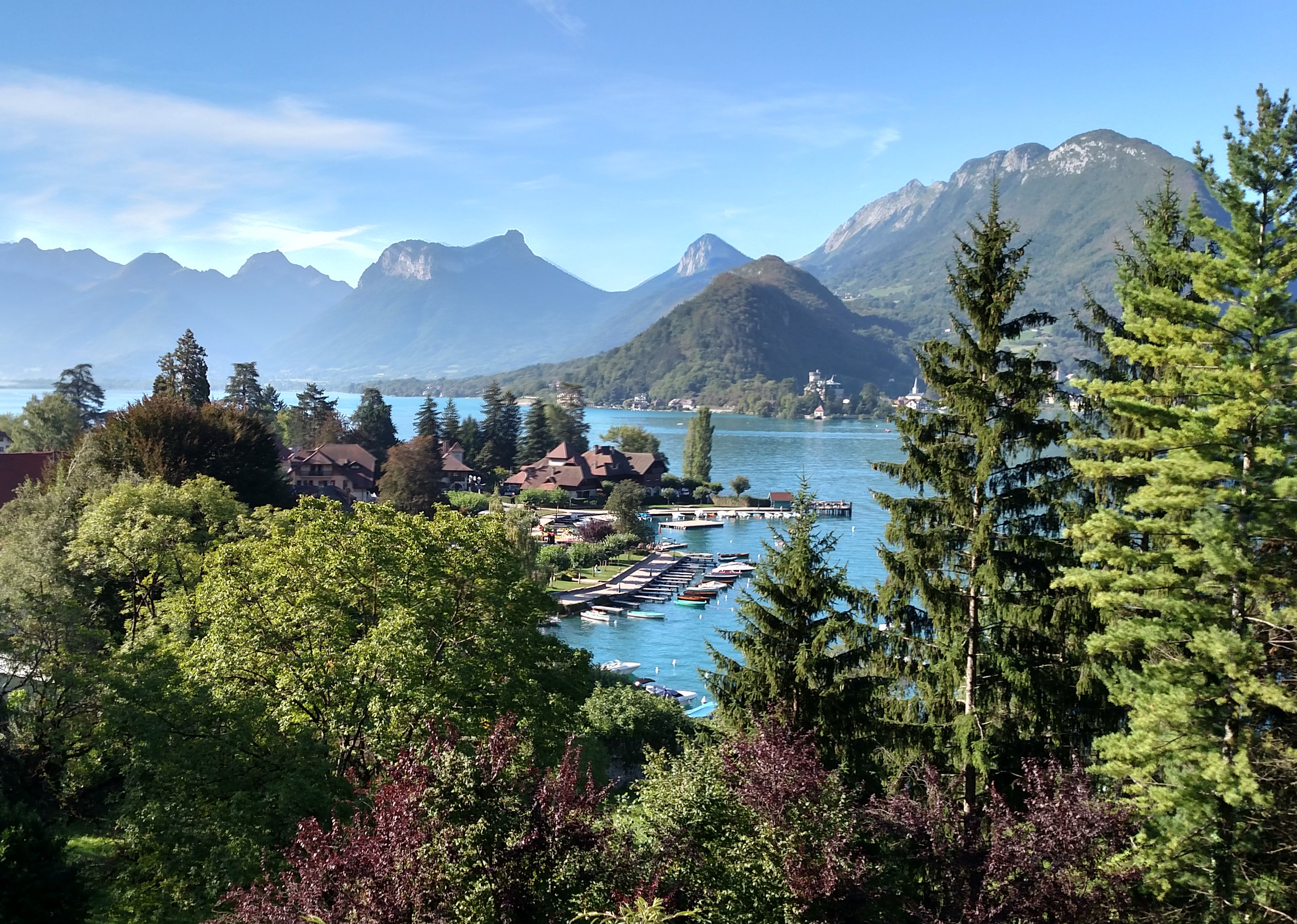 A view of green pine trees, Lake Annecy, and mountains the background.